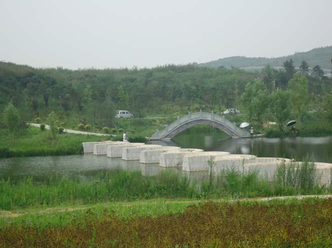 泰安滨湖路绿化工程